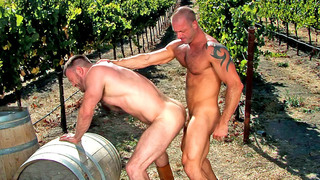 Horny tattooed stud fuck his lover's butt outdoors