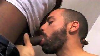 Cute bearded bloke sucks black cock