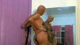 Shemale with shaved head and killer body in shemale xxx
