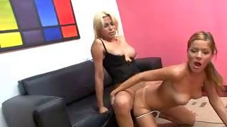 Shemale blondy in a corset fucks her cute partner